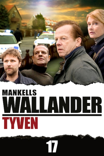Wallander – Tyven (17)