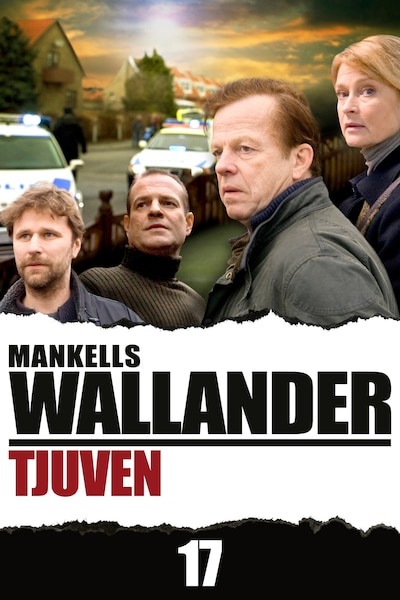 Wallander – Tjuven (17)